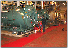 Packaged Firetube Boilers and Fuel Handling Systems